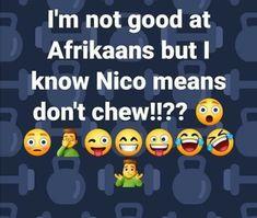 Funny Bunnies, Afrikaans, I Know, Jokes, Bunny, Cute Bunny, Husky Jokes, Memes, Rabbit