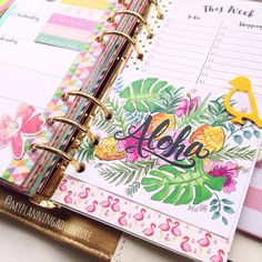 myplanningadventure: fabulousness #planner  #midori #filofax #kikkik #colorcrush  #lilyandval