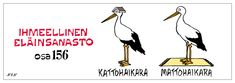 Eläinlajit 156 Proverbs, Finland, Lol, Funny, Movies, Movie Posters, House, Film Poster, Home