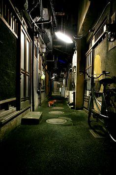 日常グラフィカ 夜、路地裏にて。                                                       …