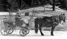 pónifogat. Horse Drawn, Budapest, A Team, Automobile, Horses, Culture, Painting, Animals, Vehicles