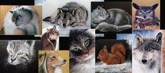 I miei animali acquerelli e matite