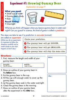 Simplified version of gummy bear lab- Growing Gummy Bear. Could coincide this lesson with Math unit on Measurement. Gummy Bear Science Project, Science Fair Projects, Science Lessons, Science For Kids, Weird Science, Science Fun, Science Ideas, School Projects, School Ideas
