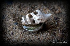 Sea Shell Ring by jvFairytales on Etsy Diy Jewellery, Unique Jewelry, Sea Shells, Silver Rings, Trending Outfits, Friends, Handmade Gifts, Etsy, Amigos