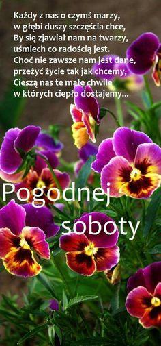Man Humor, Good Morning, Creative, Pictures, Inspiration, Facebook, Fotografia, Good Morning Funny, Photo Illustration