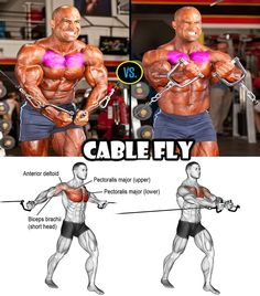 Share Fitness Tips for You Chest Workouts, Fun Workouts, Fitness Workouts, Muscle Fitness, Health Fitness, Saturday Workout, Gym Workout For Beginners, Fitness Inspiration Quotes, Bodybuilding Workouts