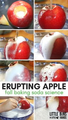 Erupting apple science for fall STEM and baking soda science. Make an apple volcano for fall STEM. Apple science experiments are perfect for preschool science, kindergarten science, and early elementary age science activities. Elementary Science, Science Experiments Kids, Science For Kids, Science Fun, Physical Science, Science Education, Earth Science, Science Projects, Science Centers