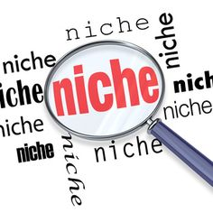 How to reveal 590,000 niches in minutes!