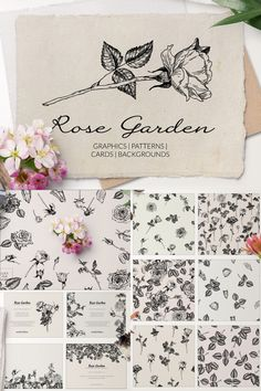 Vintage Botanical Rose Garden Design Assets Collection - including Hand-drawn Graphic Elements · Seamless Floral Patterns · Delicate Pre-made Card Templates · Romantic Backgrounds | #photoshop #illustrator #digitaldesign #creativeassets #graphicdesign #graphicelements #patterndesign #logodesign #botanicaldesign #floraldesign #vintagedesign #creativemarket #affiliatelink Romantic Backgrounds, Invitation Cards, Party Invitations, Rose Garden Design, Scrapbook Designs, Photoshop Illustrator, Floral Patterns, Card Templates, Vintage Designs