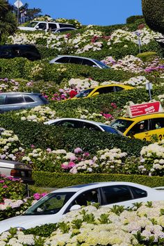 """Lombard Street, San Francisco, California, USA. Taken during busy hour with many tourists. / Photo """"Downhill ..."""" by Chaluntorn Preeyasombat"""