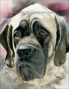 #ENGLISH #MASTIFF art