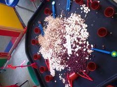 Sorting beans with tweezers.