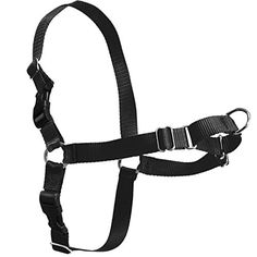 Itery Dog Harness No Pull Front Lead Nylon Pet Training Harness Black M *** Check this awesome product by going to the link at the image.(This is an Amazon affiliate link and I receive a commission for the sales)