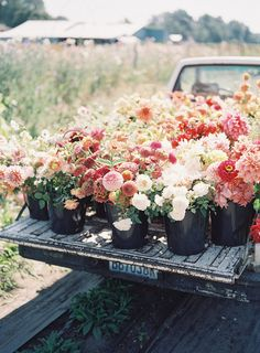 Truckload of spring colored flowers: Ivory, peach, pink, and orange florals for wedding bouquet