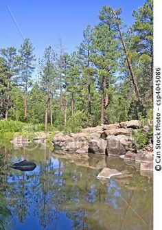 Billy Creek Pinetop, Arizona - I love to escape the heat and run to the mountains! The smell of pine and the drop in temp makes me wonder what is stopping me from moving there!
