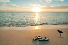 flipflops, sand and surf life doesn't get much better than that!