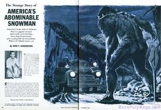 It's an abomination! Short Horror Stories, Weird Stories, Scary Snakes, Creepy, Bigfoot Video, Bigfoot Stories, The Jersey Devil, Finding Bigfoot, Adventure Magazine