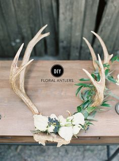 DIY Holiday Floral Antlers - Home Decorations Antler Wall Decor, Antler Art, Diy Wall Decor, Antler Mount, Deer Antler Decorations, Deer Antlers Decor, Antler Wedding Decor, Deer Skull Decor, Boho Wedding