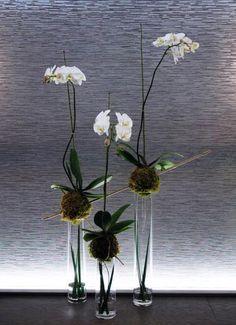 Floral design, flower arrangement, installation, decor, Bloom Couture Boston, Flowers, Corporate events, private parties, South End, Boston, MA, Florists Boston