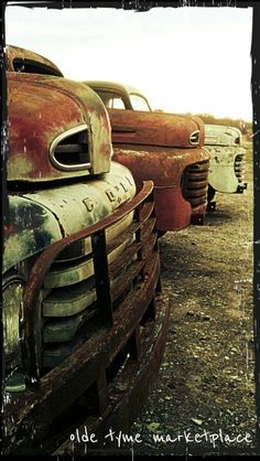 #Classic #Trucks turning to #Nature. #Beauty #RustinPeace