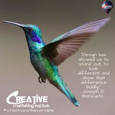 #creativeisthevariable #creative #websites #design #marketing #branding #advertising #creativemarketing #socialmedia