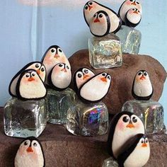 penguin pebbles!