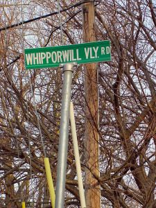 Old Whipporwill Valley Road in Middletown is perhaps the single most famous road in New Jersey, made known by issues of Weird NJ, the paranormal bible of the state. The road, night in and night