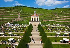 Prohlídky sklepů s ochutnávkami vína a sektu se konají denně. Zámek Wackerbarth je připraven na návštěvu zahraničních hostů a disponuje audioprůvodci v řadě jazyků, i v češtině © Schloss Wackerbarth