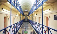 Justice Secretary David Gauke unveils plans to SCRAP prison sentences of six months or less Public Information, Farm Hero Saga, Secretary, Mail Online, Daily Mail, Sentences, Prison, Islam, Scrap