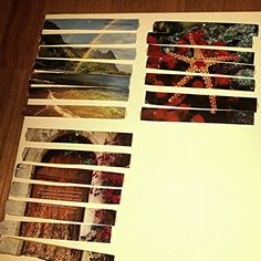 Alzheimer's activity... Glue picture to card stock. Cut into strips. Store in Baggie.