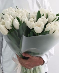 Boquette Flowers, Luxury Flowers, My Flower, Fresh Flowers, Planting Flowers, Beautiful Flowers, Spring Flowers, White Tulips, White Flowers