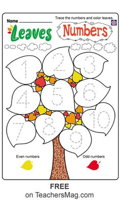 Fall Worksheets for Kindergarten Free Fall Leaves Worksheets for Preschool and Kindergarten Fall Preschool Activities, Numbers Preschool, Preschool Printables, Preschool Math, Preschool Worksheets, Kindergarten Addition Worksheets, Kindergarten Themes, Kindergarten Crayons, Baby