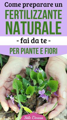 #faidate #diy #fertilizzantenaturale #stiledonna Vegetable Garden, Plants, Flower Arrangements, Garden Plants, Flowers, Herbs, Green, Urban Garden, Garden