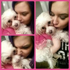 After work selfies with the cutest dog in the universe #dogsofinstagram #dogs #dog #puppy #puppies #dogstagram #dogsofig #lovedogs #malteseoftheday #malteseofig #follow #maltese #pink #pretty #socute #cute #cutie #love #loveit  #selfie #me #makeupjunkie #makeup #beautiful #beauty #beautyblogger