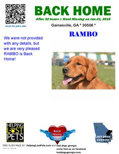 Helping Lost Pets | Dog - Golden Retriever - Back Home