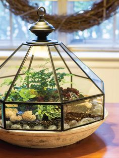 These thrift store DIY garden projects are just the thing for a rainy Saturday (or a sunny Monday!) to help you decorate your outdoor space. Terrariums Diy, Wall Terrarium, Terrarium Containers, How To Make Terrariums, Terrarium Decorations, Glass Light Fixtures, Glass Light Shades, Diy Garden Projects, Garden Crafts