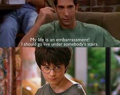 MY TWO FAVORITE SERIES. Friends, and Harry Potter.