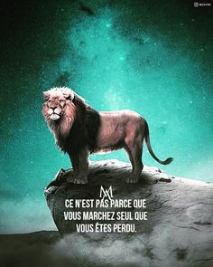 io - The only tool you need to launch your online business Study Motivation Quotes, Life Motivation, Rap, Citations Business, Inspiration Entrepreneur, French Language Lessons, Gentleman Rules, Citation Entrepreneur, French Expressions