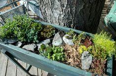 Cute little planter box, no permanent place necessary!