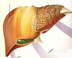 6 alimentos que combaten el hígado graso - Mejor con Salud