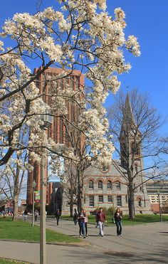 spring, Dubois Tower and Old Chapel, University of Massachusetts, Amherst, MA