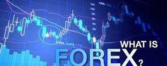 belajar forex malang | kursus forex malang | privat forex malang