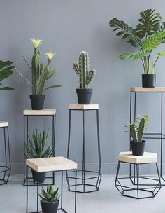Decorate your home in class modern nordic style with the delightful Nico iron frame geometric side table! Perfect for displaying indoor plants or photo frames. Made from metal. Free Worldwide Shipping & Money-Back Guarantee Plant Stand, Home Decor Accessories, Wall Decor, Office Decor, Home Decor, Wood Plant Stand, Plant Decor, Plant Shelves, House Plants Decor
