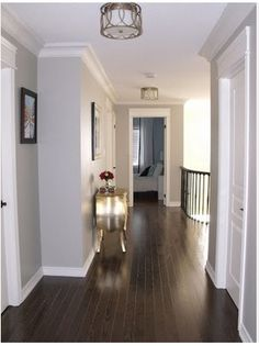 Seeing what others do with dark floors since it's in our ENTIRE house. Maybe this light gray for the living room.