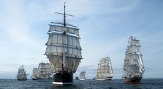 Tall Ships - Google Search                              …