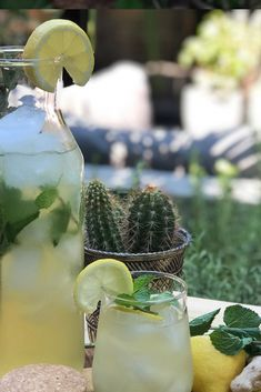Zitronen-Eistee mit Ingwer, Minze und Honig – Paul Verlinden – Join in the world of pin Summer Drinks, Fun Drinks, Smoothies, Bbq, Tasty, Table Decorations, Fruit, Juices, World