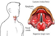 HOMOEOPATHIC REMEDIES for LARYNGEAL CANCER