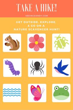 This free printable hike scavenger hunt is perfect for family nature fun! This nature scavenger hunt is also great for Cub Scout and Girl Scout hikes. #girlscouts #cubscouts #hiking #familyfun #familytime #freeprintable #printables #printable #diy Nature Activities, Craft Activities For Kids, Family Activities, Cub Scouts, Girl Scouts, Preschool Printables, Free Printables, Kids Printable Coloring Pages, Nature Scavenger Hunts