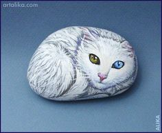 painted rocks:White cat with different eyes