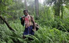 Jadav Payeng - the man who single-handedly created a lush green dense forest ecosystem spreading over 1,360 acres in what was once a barren sandbar in Assam, India.   In 1979 Jadav in his early teens, saw snakes dying without any tree cover in this place and so decided to plant trees here.   This man made forest is today home to several thousand varieties of trees and an astounding diversity of wildlife -- birds, deer, apes, rhino, elephants and even tigers!